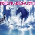 DESCUBRIR EL ANIMAL DE PODER